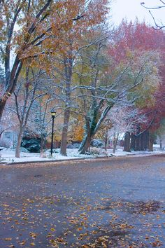 ✮ First snow of the Colorado Autumn