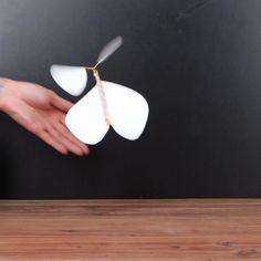 Überrasche Deine Freunde mit dieser fliegenden Schmetterlingskarte