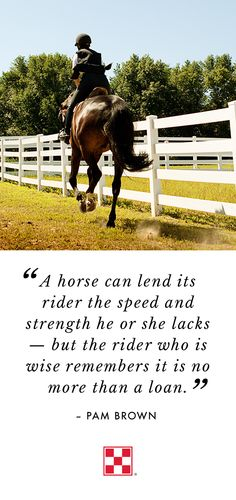 We agree! Horses lend us strength in many ways — not just on the trail, but in life.