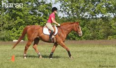 4 Exercises to Rev up the Lazy Horse. Motivate your horse to get moving with this simple program.