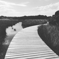 I have no idea where this will take me! The beauty of adventure. #boardwalks #riverside #peaceful #victoria #anglesea #nature #explore #australia #travel by collectivlee_me http://ift.tt/1KosRIg