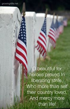 American Psalms Update - In honor of our fallen. Memorial Day Pictures, Memorial Day Quotes, Happy Memorial Day, American Freedom, American Flag, American Pride, Patriotic Quotes, Home Of The Brave, Fallen Heroes