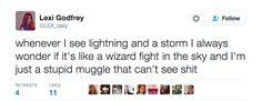 "Muggle: ""Harry Potter is for children"" / Me: ""Wingardium Levifuckyou"""