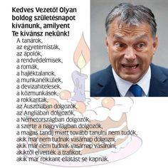 Belföld: Orbán: Köszönöm, hogy imádott - NOL.hu Tandem, Haha Funny, Funny Pictures, Humor, Words, Memes, Celebrities, Bridge, Fanny Pics