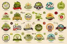 Organic food and Farm Fresh labels Graphics Organic food label Set. Farm Fresh label and Logo element. Organic, bio, ecology natural design temp by brainpencil Organic Food Shop, Benefits Of Organic Food, Farm Logo, Organic Logo, Food Labels, Food Label Template, Logo Food, Creative Sketches, Pencil Illustration