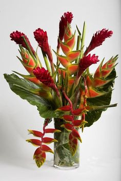 Tropical Flower Arrangements | - Flowers San Francisco - Tropical Heliconia Floral Arrangement ...