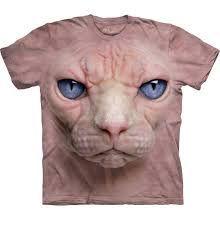 Výsledek obrázku pro bezsrstá kočka