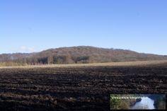 Strecke Bonn-Oberkassel - Kloster Heisterbach 02.02.2014 - hier folgen wir dem Weg nun zum Kloster Heisterbach