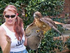 Mac and Lady Phaelin--red tailed hawk debut  at Izzie's Pond 4/14