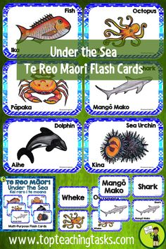 Learn the Te Reo Māori names for creatures under the sea - Kei raro i te moana - with these great multi-purpose flash cards. Great Maori Language Week Activities for kids. Get these te reo Maori resources for your classroom. Primary Classroom, Elementary Teacher, Classroom Ideas, School Resources, Teaching Resources, Treaty Of Waitangi, Maori Words, Sea Activities, Pose
