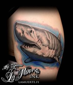 Realistic shark portrait