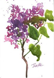 Garden sketches - Lilac by Janis McElmurry