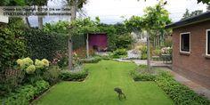 Tuin met gras en strakke borders