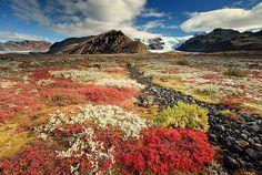 37-lindas-paisagens-da-Islandia-(13)