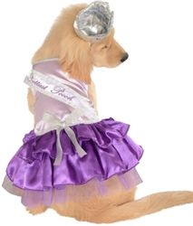 Prettiest Pooch Dog Costume