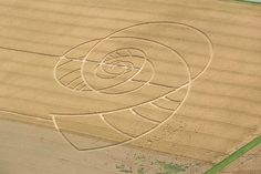 Swiss Crop Circle 2009.   Location Tägermoos between Steckborn and Hörhausen. The crop circle in this photo is already 15 days old. For visitors the owner made additional paths which disfigure the image somewhat. The shape is just simple, but more than a few circles. It reminds of the double helix of DNA. Aerial shot from a Reims-Cessna F172N Skyhawk II, Switzerland, July 27, 2009, 4.16 pm. From Kecko on flickr.