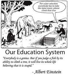 For a Fair Selection Everybody Has to Take the Same Exam Please Climb That Tree Our Education System Everybody Is a Genius but if You Judge a Fish by Its Ability to Climb a Tree It Will Live Its Whole Life Believing That It Is Stupid Albert Einstein Wisdom Quotes, True Quotes, Great Quotes, Funny Quotes, Funny Memes, Inspirational Quotes, Quotes Pics, Motivational Pictures, Jokes Quotes