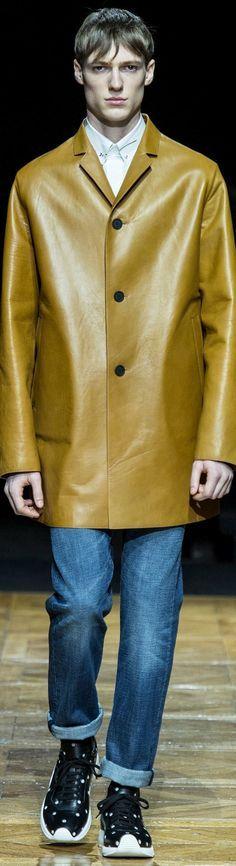 Dior Homme  Menswear  Fall