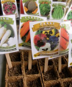 Gardening with Kids:  Make garden markers with seed packets, read a story, plant and take care of seeds.