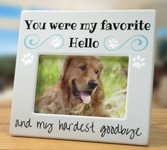 Pet Memorial Picture Frame - Bereavement Photo Frame for Dog or Cat - You Were my Favorite Hello and My Hardest Goodbye - 4 x 6 Frame Pet Memorial Picture Marielena Rios Awesome Stuff for Pets! Pet Memorial Gifts, Dog Memorial, Memorial Ideas, Souvenir Animal, Dog Pictures, Animal Pictures, Remembrance Gifts, Cat Dog, Pet Loss