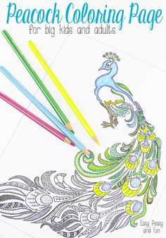 Peacock Coloring Page for Adults - Easy Peasy and Fun