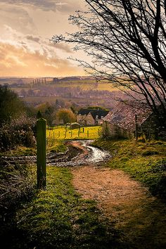 This is Hoo Lane in Chipping Campden - part of the Cotswold Way. The Cotswolds (by iamchrisphotography)