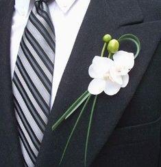 blanca en el ojal de la orquídea: