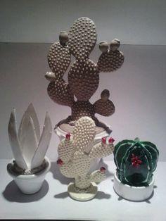Cactus e piante grasse in ceramica.