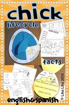 Chick Science craftivity: facts, lifecycle and label! $3.00