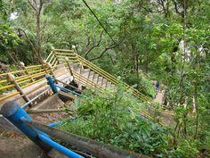 """#thailand #krabi """"Thailand - Von Tigern und Tempeln"""" Lies mehr über die 1.237 Stufen auf www.goodmorningworld.de"""