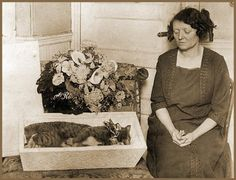 Post mortem and memento mori images. I do not claim copyright. Vintage memento mori and post mortem photography from The Skull Illusion Vintage Photographs, Vintage Photos, Memento Mori Photography, Creepy History, Pet Cemetery, Post Mortem Photography, Momento Mori, Rockn Roll, Macabre