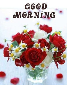 Good Morning Images For Whatsapp Good Morning Friends Images, Good Morning Beautiful Pictures, Latest Good Morning Images, Good Morning Nature, Good Morning Happy Sunday, Good Morning Images Flowers, Good Morning Roses, Good Morning Cards, Good Morning Photos