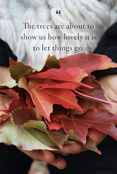 You'll want to read these fabulous fall quotes that sum up the way we feel about fall. These festive sayings about autumn will remind you of all the beauty the season has to offer from September through November. Great Quotes, Quotes To Live By, Me Quotes, Motivational Quotes, Inspirational Quotes, Fall Quotes, Quotes About Autumn, Quotes About Fall Season, Quotes About Trees