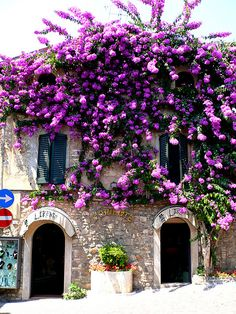L'oriente a Sirmione in Summer Italy via flickr