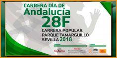 El 28-2-2018, a las 10:00 h. en el Parque Tamarguillo, Parque Alcosa (Sevilla) se celebrará la VII Carrera Popular Parque Tamarguillo Ed. 2018. #carrerapopular #carreraparquedeltamarguillo #loslentosdetorreblanca #carreraloslentos