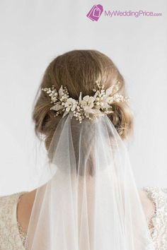 Perfect hairstyle, headpiece and veil