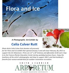 Enjoy the EJC Arboretum's new art exhibit featuring the photography art of Celia Culver Rutt. All proceeds support the arboretum. http://www.jmu.edu/arboretum/artist-of-the-month.shtml
