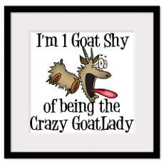 Image detail for -Funny Goat Framed Prints | Funny Goat Framed Posters