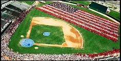 I vote because it is as American as baseball. #WhyIVote