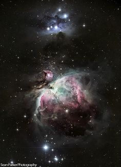 Orion | by Sean Parker Photography