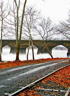 Ice Jam River Fog In Morrisville Pa|Love's Photo Album