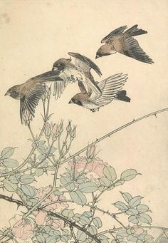 Imao Keinen  Title:Birds and Roses  Date:1890's