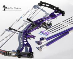 Hoyt custom PURPLE compound bow, my daughter would love this one!