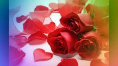 Regarder la vidéo «Beautiful Curvy Girls. Belles Filles rondes» envoyée par RENE FOALENG LOWE sur dailymotion.
