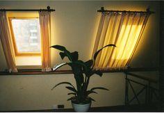 Cortinas de ventana Velux - Cortinas de ventana Velux Imágenes efectivas que le proporcionamos sobre decor inspiration Una imag - Skylight Covering, Skylight Shade, Skylight Blinds, Skylight Window, Roof Window, Attic Window, Window Curtains, Skylights, Attic Loft