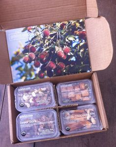 GoBites Healthy Snack Monthly Subscription Box - September 2012 Review