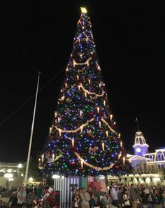 Christmas - Magic Kingdom