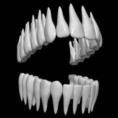 3D Teeth Model - 3D Model