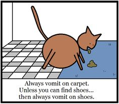 Always vomit on carpet.  #cats