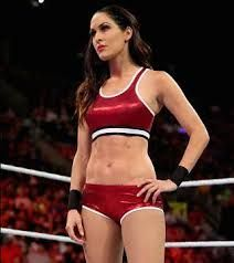 Image result for wwe brie bella